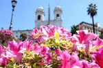 Las azaleas de Trinità dei Monti