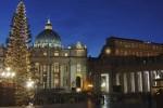 Navidad en el Vaticano: el Árbol de Navidad de la Plaza de San Pedro